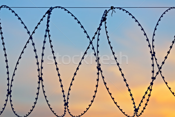 Barbed wire a sunset Stock photo © Roka