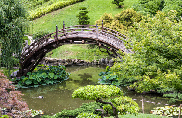 Japonais jardin traditionnel pont nature couleur Photo stock © Roka