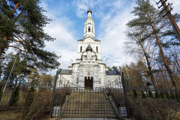 Russisch orthodox kerk icon hemel gebouw Stockfoto © Roka