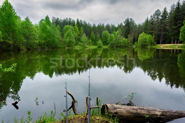 Hengel vissen meer bos water weg Stockfoto © Roka