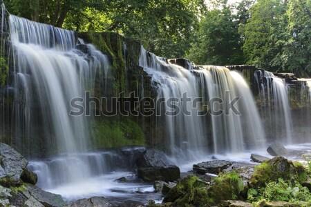 Waterval mooie natuur reserve water blad Stockfoto © Roka