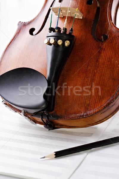 Violin on a blank music books Stock photo © Roka