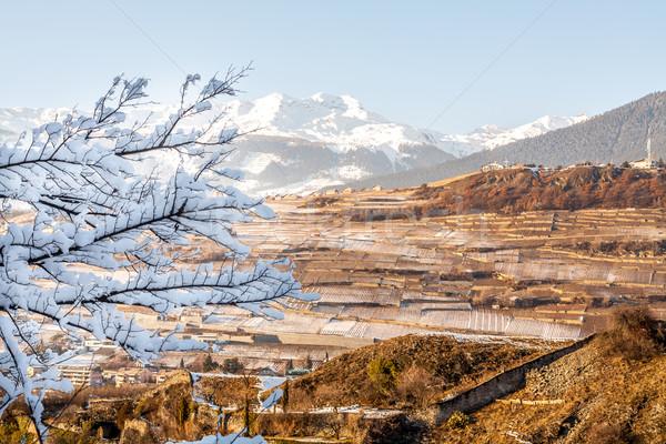 Panoramiczny widoku Szwajcaria Hill miasta domu Zdjęcia stock © romitasromala