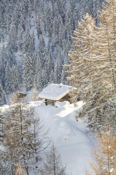 Rustykalny stylu domu lasu Szwajcaria Zdjęcia stock © romitasromala