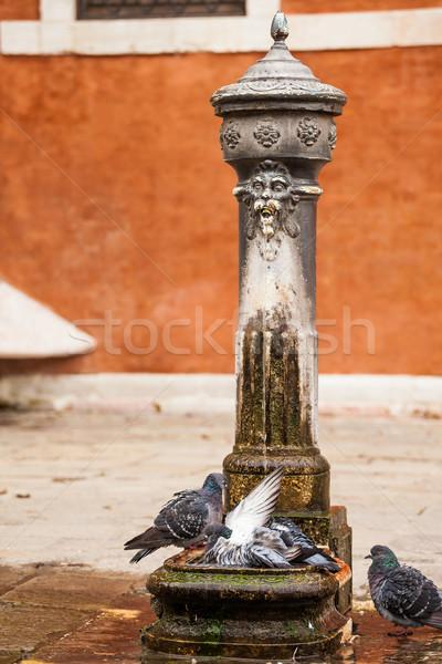 Woda pitna fontanna Wenecja tradycyjny Włochy pić Zdjęcia stock © romitasromala
