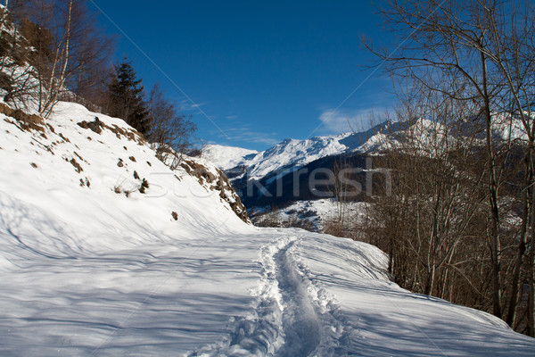 Zimą krajobraz Szwajcaria alpy niebo chmury Zdjęcia stock © romitasromala