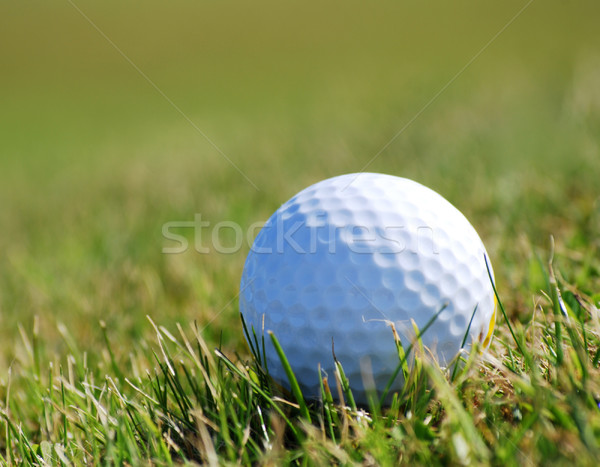 Golfball on grass Stock photo © ronfromyork