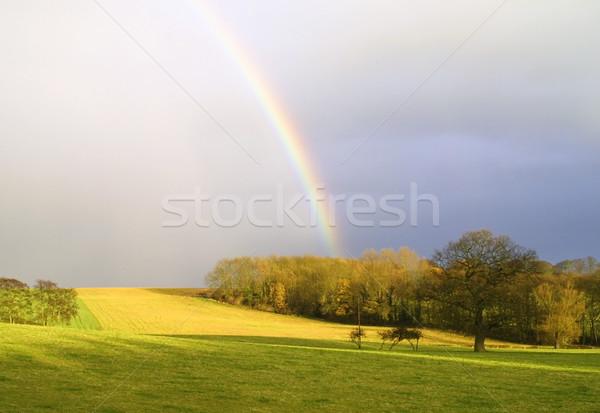 Rainbow campagne relevant arbres yorkshire prairie Photo stock © ronfromyork