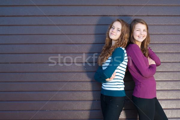 Barátság kettő legjobb barátnők szürke tini Stock fotó © rosipro