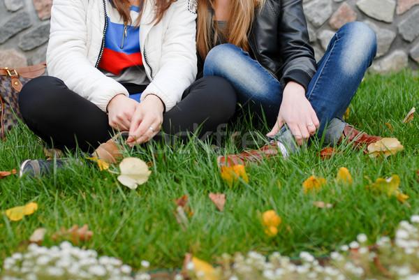 Dois amigos sessão grama verde jeans Foto stock © rosipro