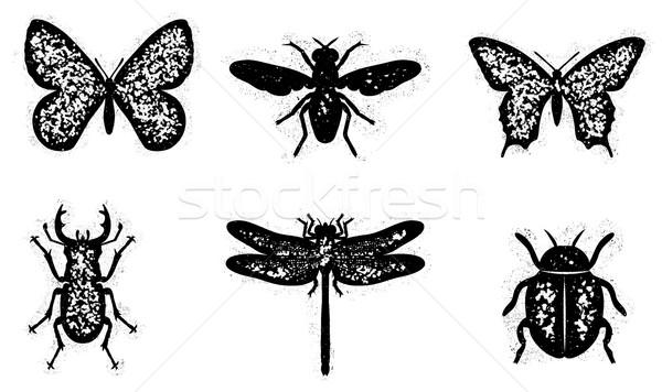 Sujo inseto conjunto aranha voar animal Foto stock © roverto