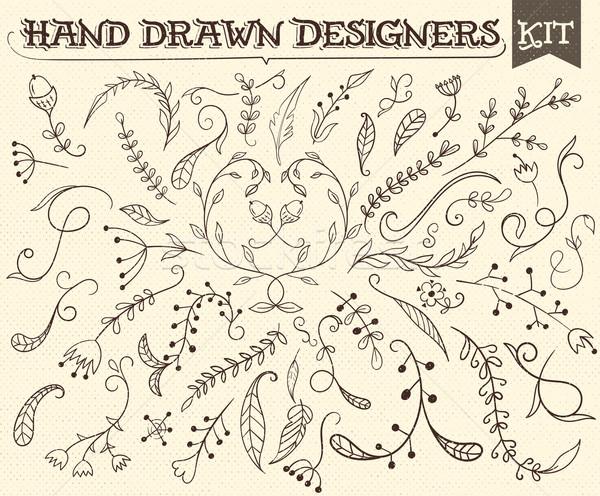 Kézzel rajzolt klasszikus virágmintás elemek összes természet Stock fotó © roverto