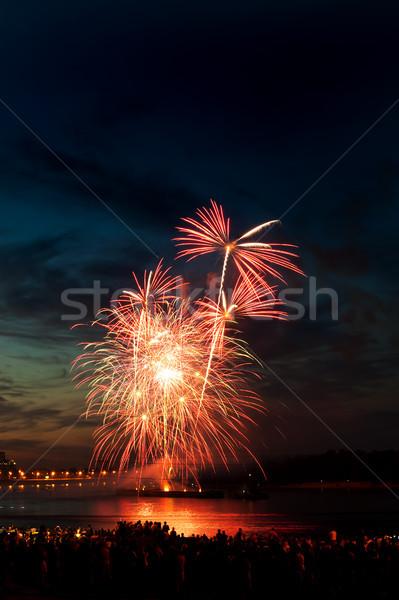 Brightly colorful fireworks  in the night sky  Stock photo © rozbyshaka