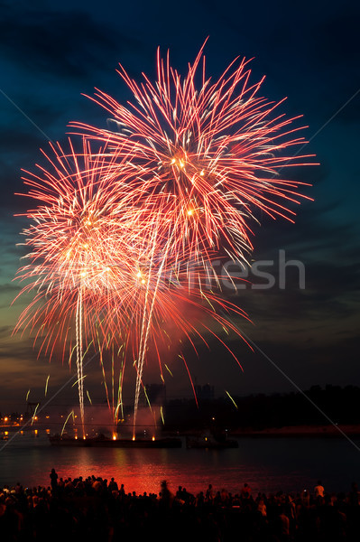 Renkli havai fişek gece gökyüzü renkler parti Stok fotoğraf © rozbyshaka