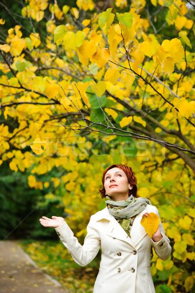 Genç kadın sonbahar park genç yürüyüş Stok fotoğraf © rozbyshaka