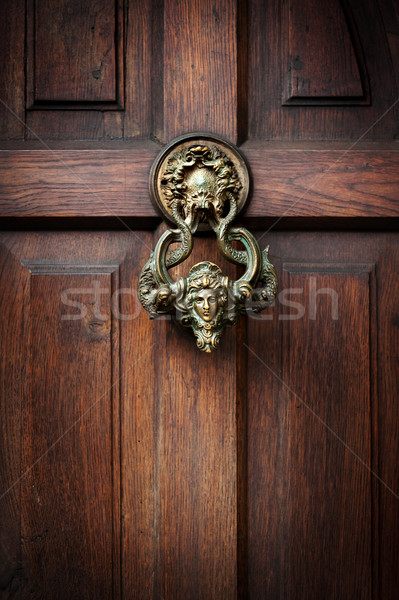 Knocking on Dracula's door Stock photo © rozbyshaka