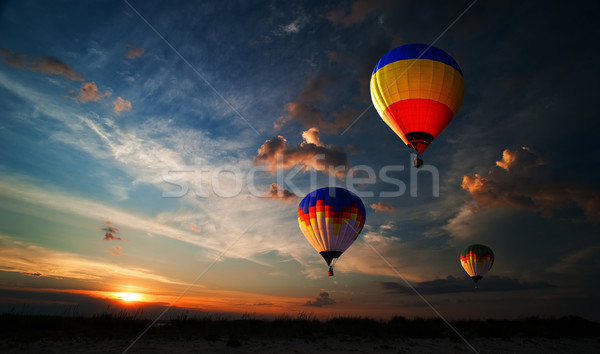 Romance of the flight Stock photo © rozbyshaka