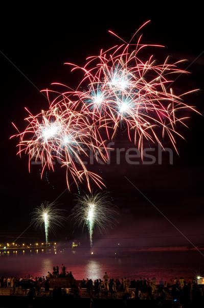 Colorido fogos de artifício céu noturno cores festa Foto stock © rozbyshaka