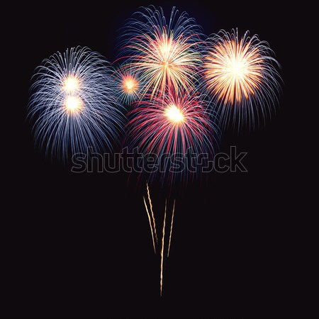 Brightly colorful fireworks  in the night sky  Stock photo © rozbyshaka