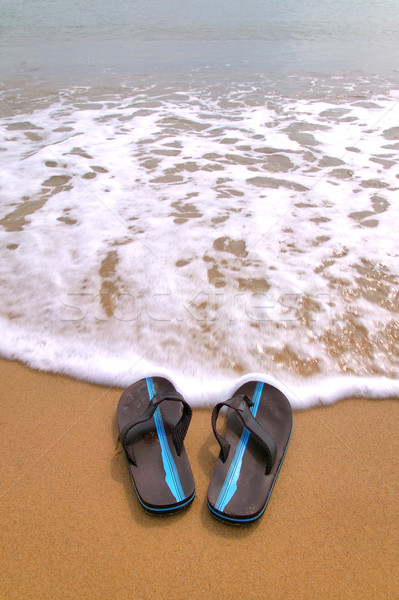 Flip flops at the beach vertical. Stock photo © RTimages