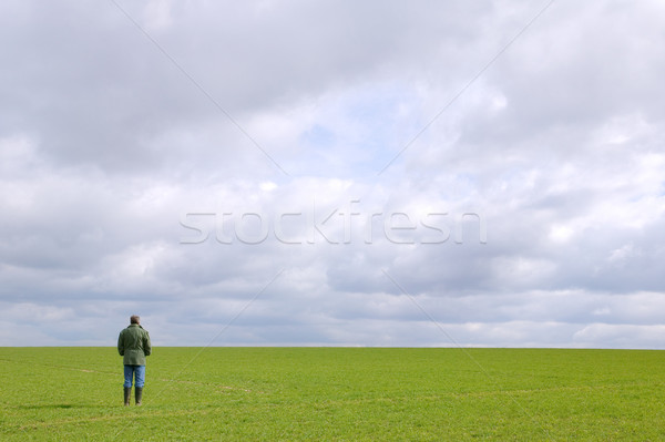 Man in a field Stock photo © RTimages
