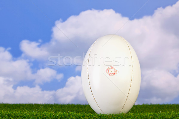 Rugby ball tee'd up on grass Stock photo © RTimages