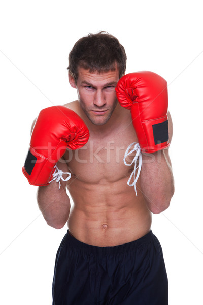 Male boxer isolated Stock photo © RTimages