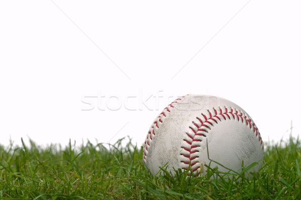 Baseball Stock photo © RTimages