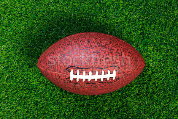 American football on grass Stock photo © RTimages
