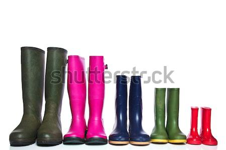 Group of wellie boots Stock photo © RTimages