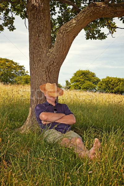 Afternoon nap on a hot summers day Stock photo © RTimages