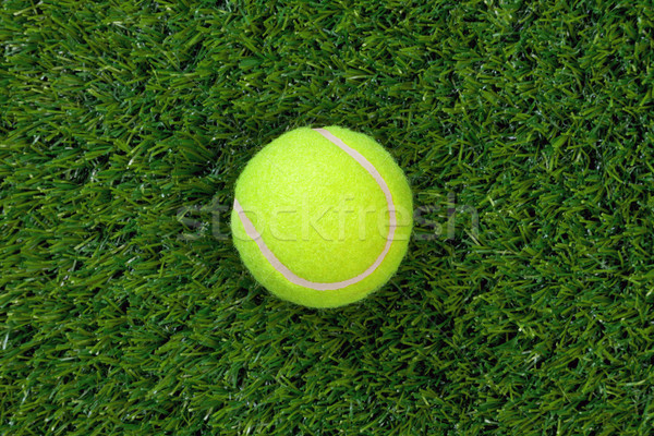 Tennis ball on grass Stock photo © RTimages