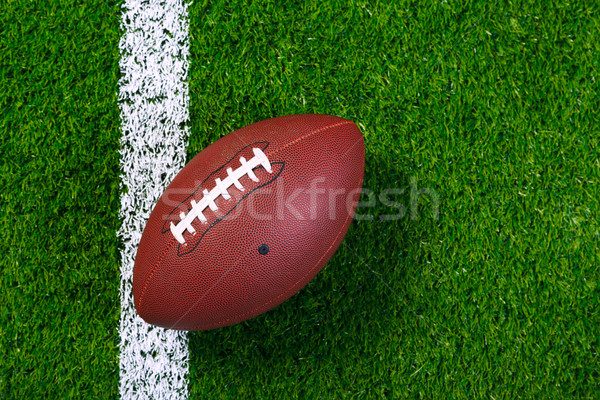American football on grass from above. Stock photo © RTimages