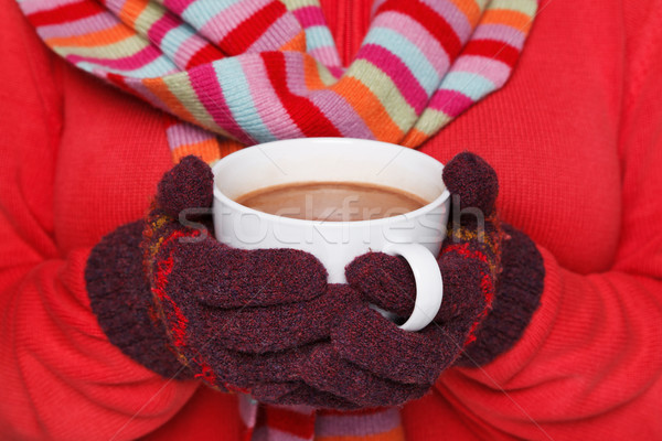 Woman holding a mug of hot chocolate Stock photo © RTimages