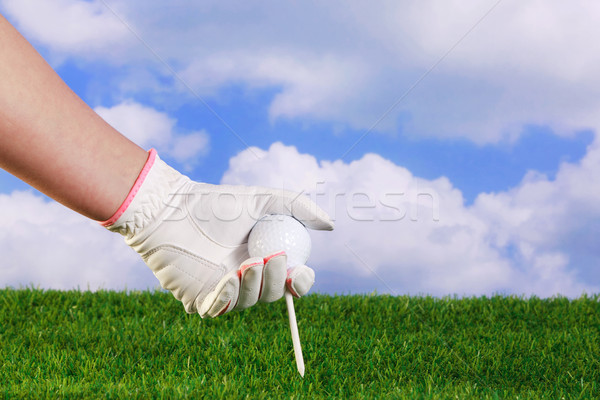 Lady placing golf ball and tee Stock photo © RTimages