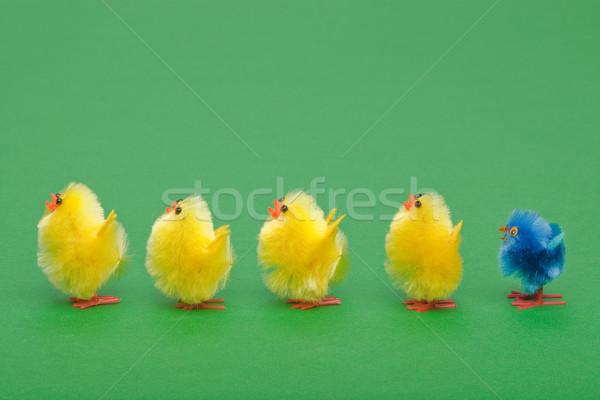Pasen kuikens lijn permanente plek oneven Stockfoto © RTimages