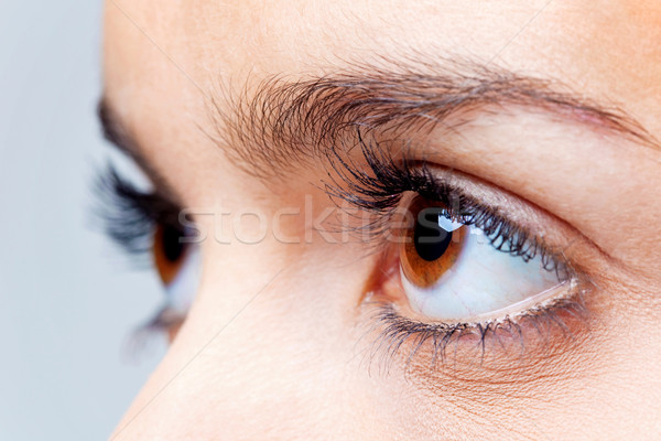 Big brown eyes Stock photo © RTimages