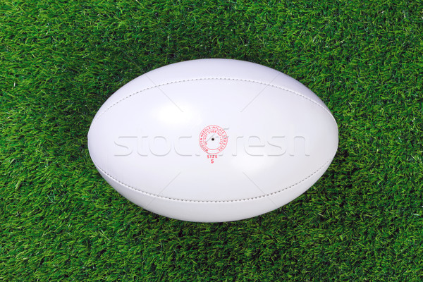 Rugby ball on grass Stock photo © RTimages