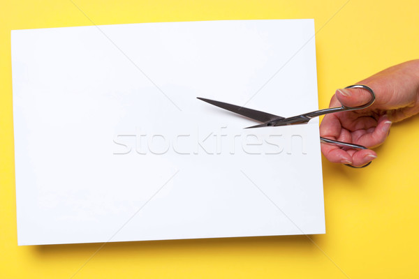 Scissors cutting blank paper Stock photo © RTimages