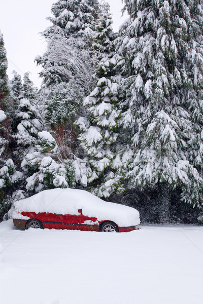 Red car covered in snow Stock photo © RTimages
