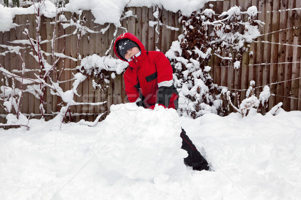 Young boy making a snowman Stock photo © RTimages