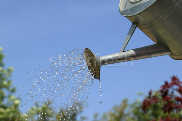 Watering the garden Stock photo © RTimages
