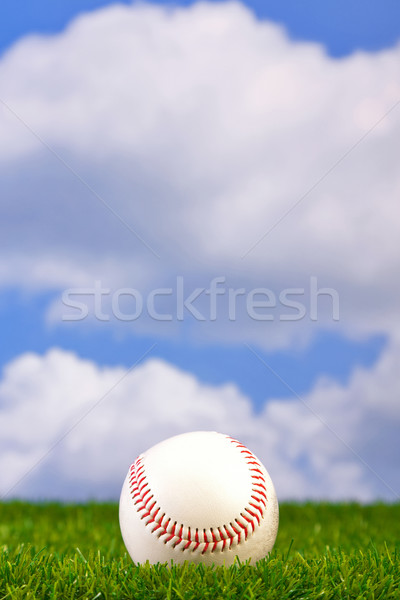Baseball on grass Stock photo © RTimages