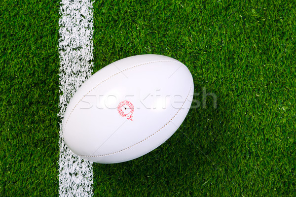 Rugby ball on grass from above. Stock photo © RTimages