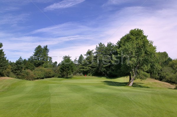 Approach to putting green Stock photo © RTimages