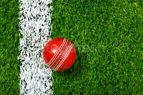 Cricket ball on grass from above. Stock photo © RTimages