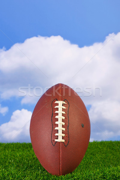 American football  Stock photo © RTimages