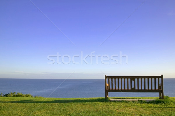 Empty bench looking out to sea. Stock photo © RTimages