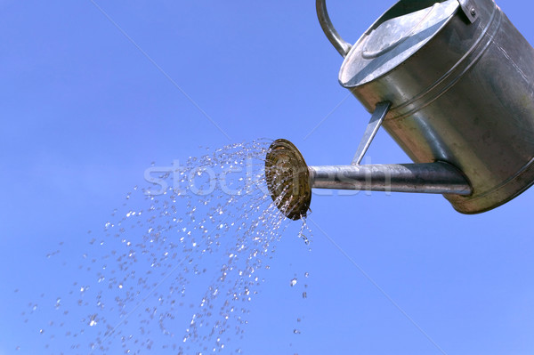 Watering can Stock photo © RTimages
