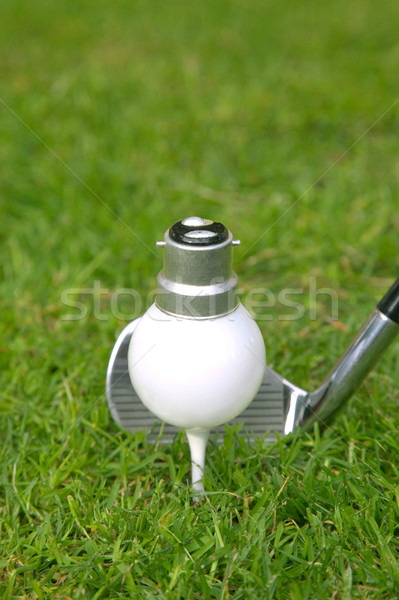 Golf Idea Stock photo © RTimages